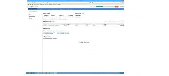 Profit Google Adsense de 800 E lunar