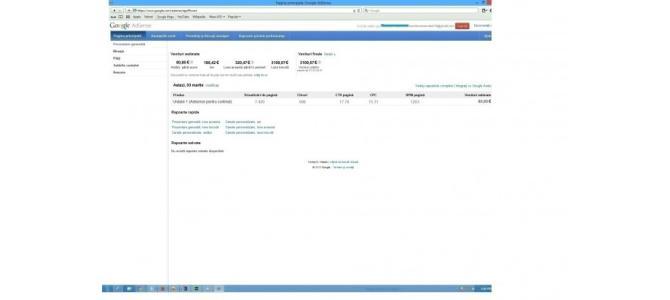 Profit Google Adsense. 800 E lunar