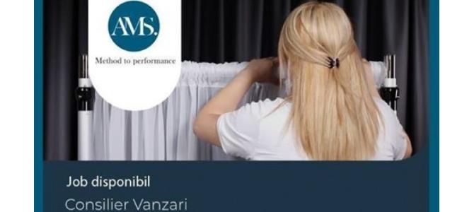 Consilier Vanzari & Decorator