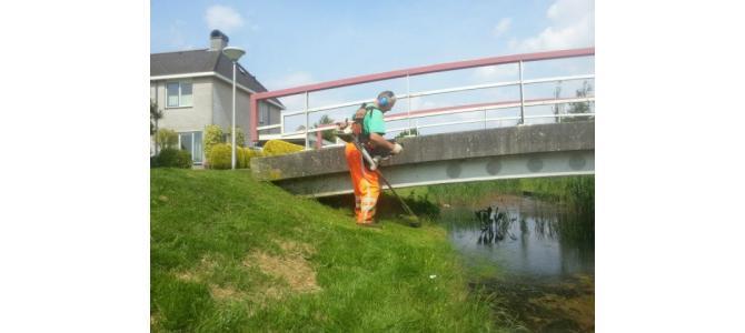 Angajam muncitori la spatii verzi in Olanda