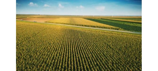 Vanzare teren agricol Romania-Mehedinti 2000 ha