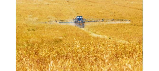 Dau in arenda teren agricol Mehedinti suprafata 50>100 ha