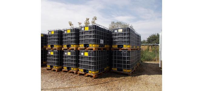 bazin de apa 1000 litri la Oradea,  la 399 Lei,