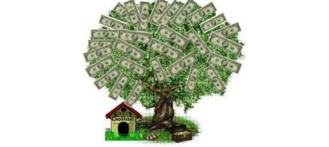 ÎMPRUMUT ONEST DE LA 420.000,00 $ LA 5000.000 $