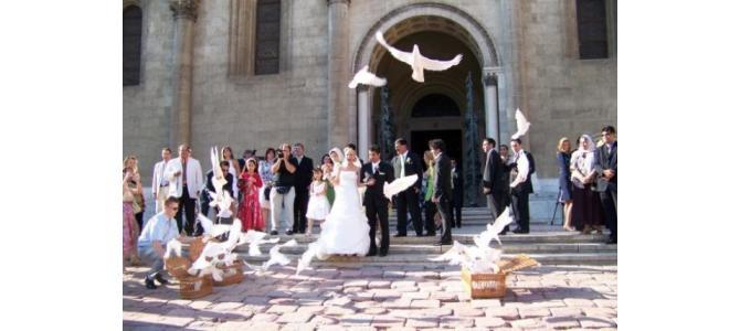 Lansarea porumbeilor la nunti Oradea